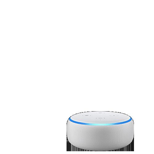 Free Nights plus an Echo Dot